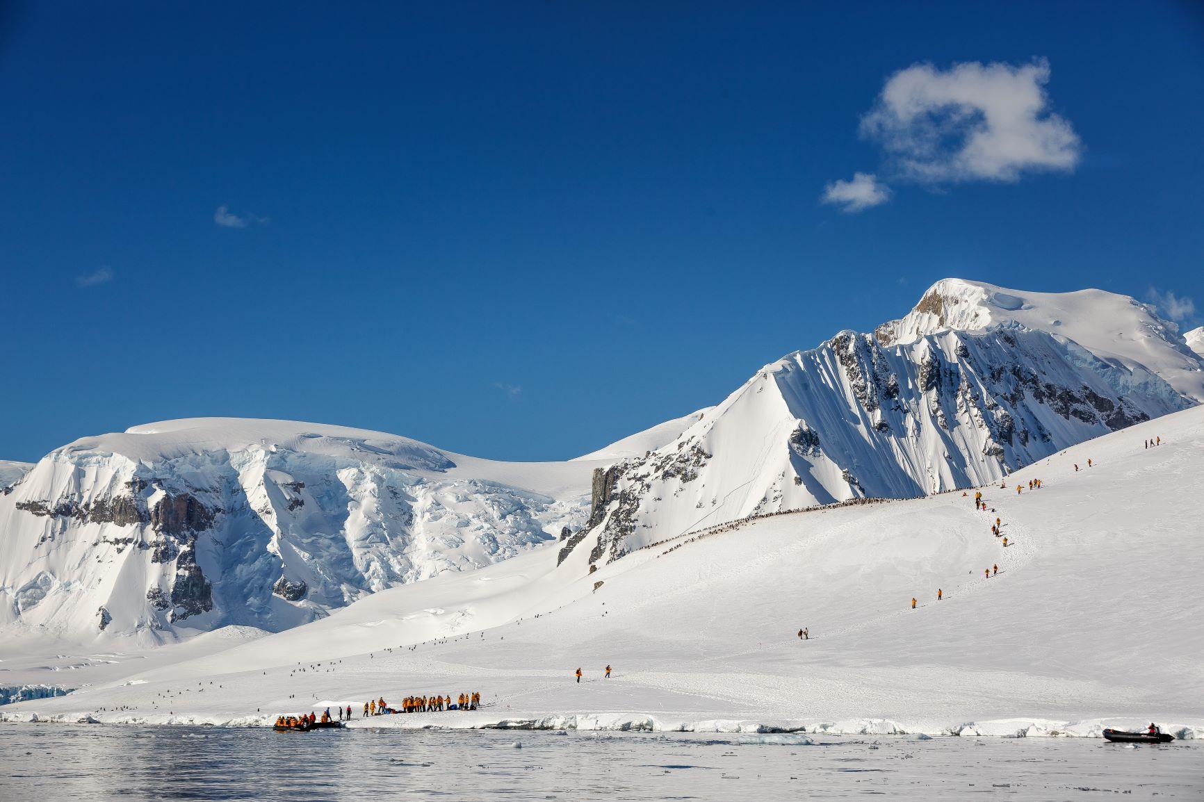 雪の斜面を登ってペンギンの営巣地を見学