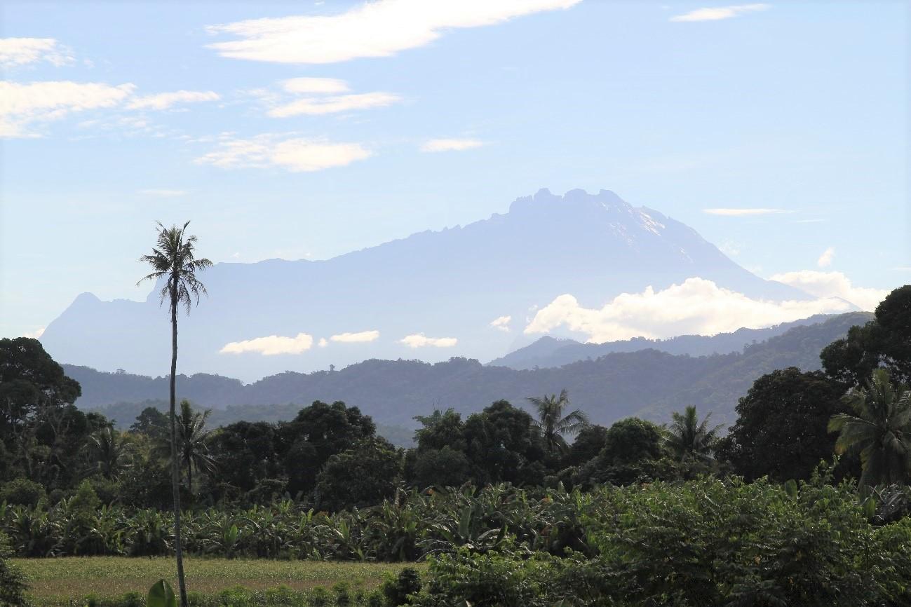 移動の途中に見えるキナバル山