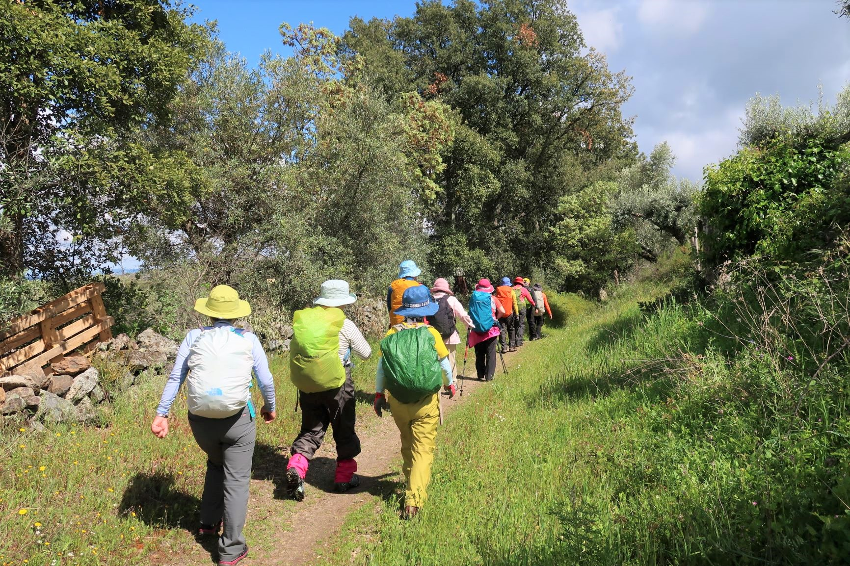 村と村をつなぐトレイルをハイキング(4日目)