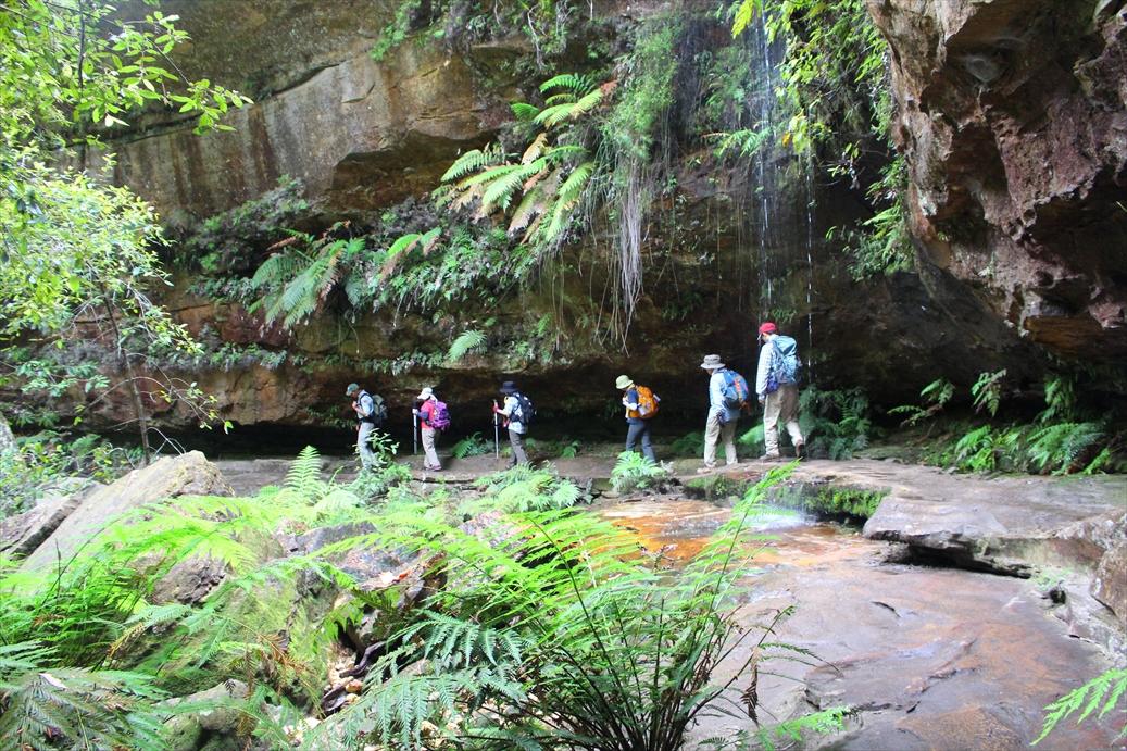 美しい滝を眺めながら峡谷の中を歩きます