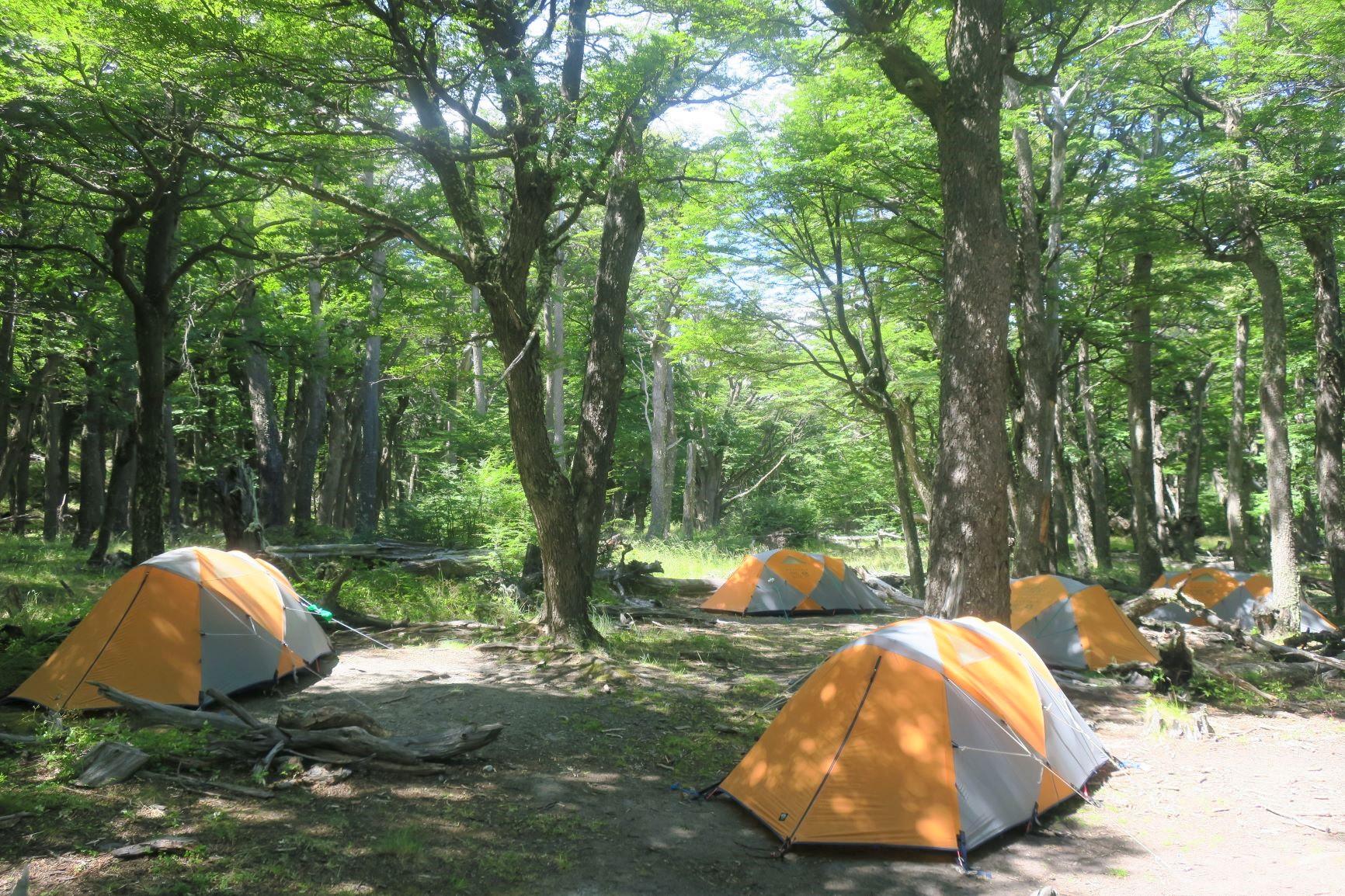 静かで快適なキャンプサイト