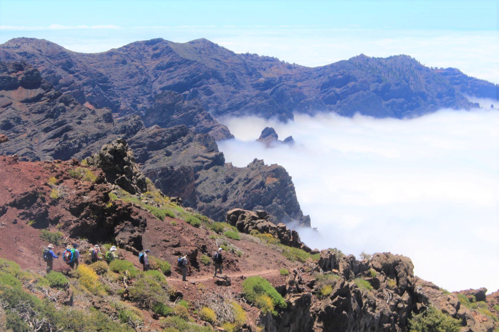 ラ・パルマ島のカルデラ・デ・ラ・ダブリエンテ国立公園をハイキング(6日目)