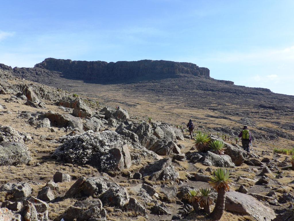 エチオピア最高峰ラスダシャン(4,550m)の頂上岩壁に向かって(実際の頂上は正面の岩壁の奥)(5日目)
