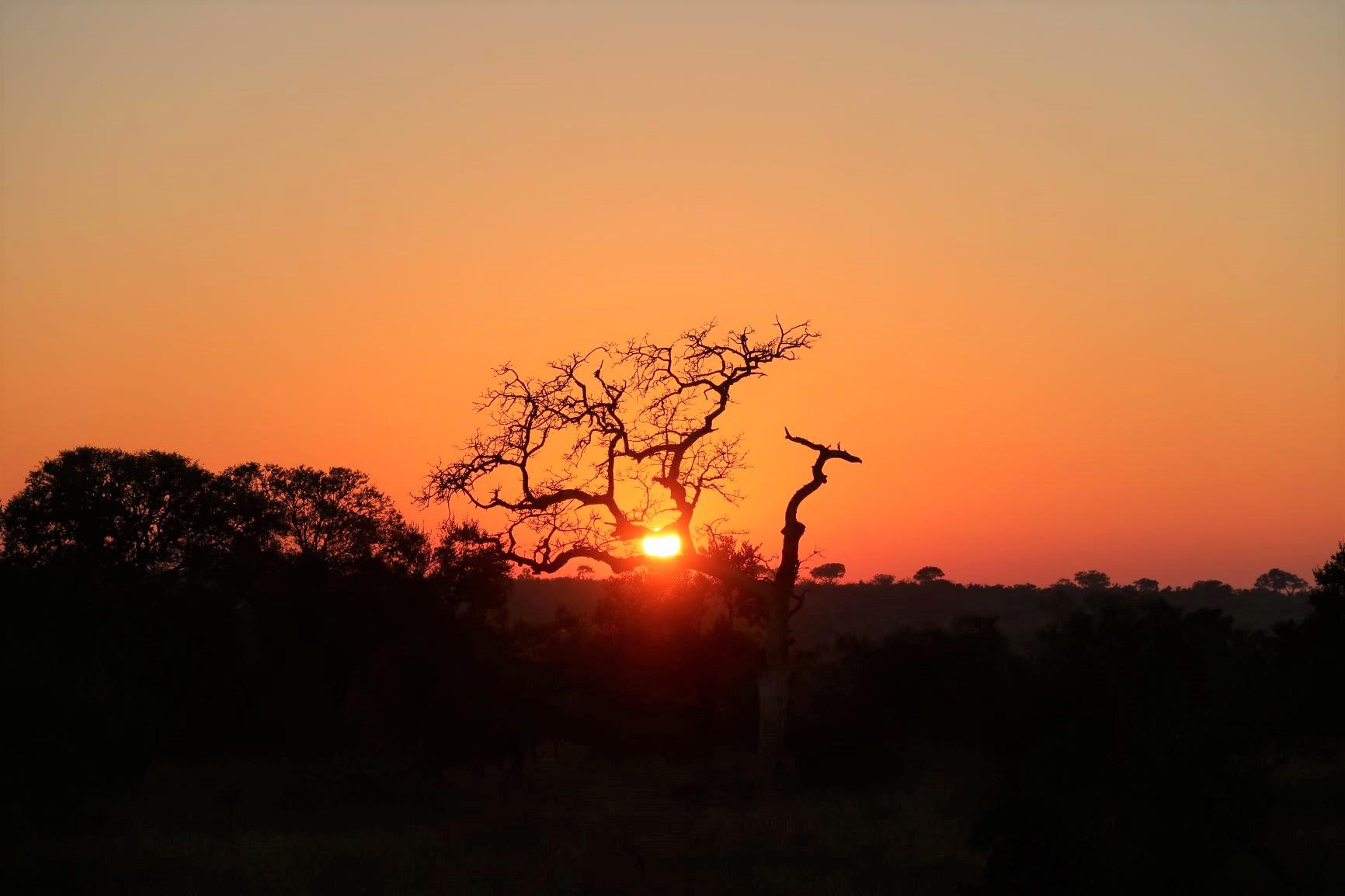 アフリカの大地で迎える日の出