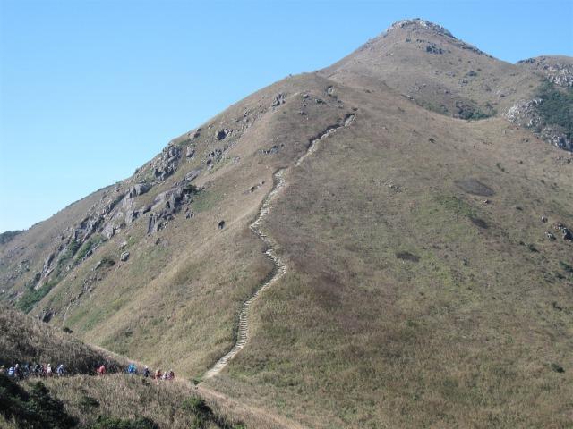香港で2番目に標高が高い鳳凰山(ランタオピーク934m)の山頂へ続く登路