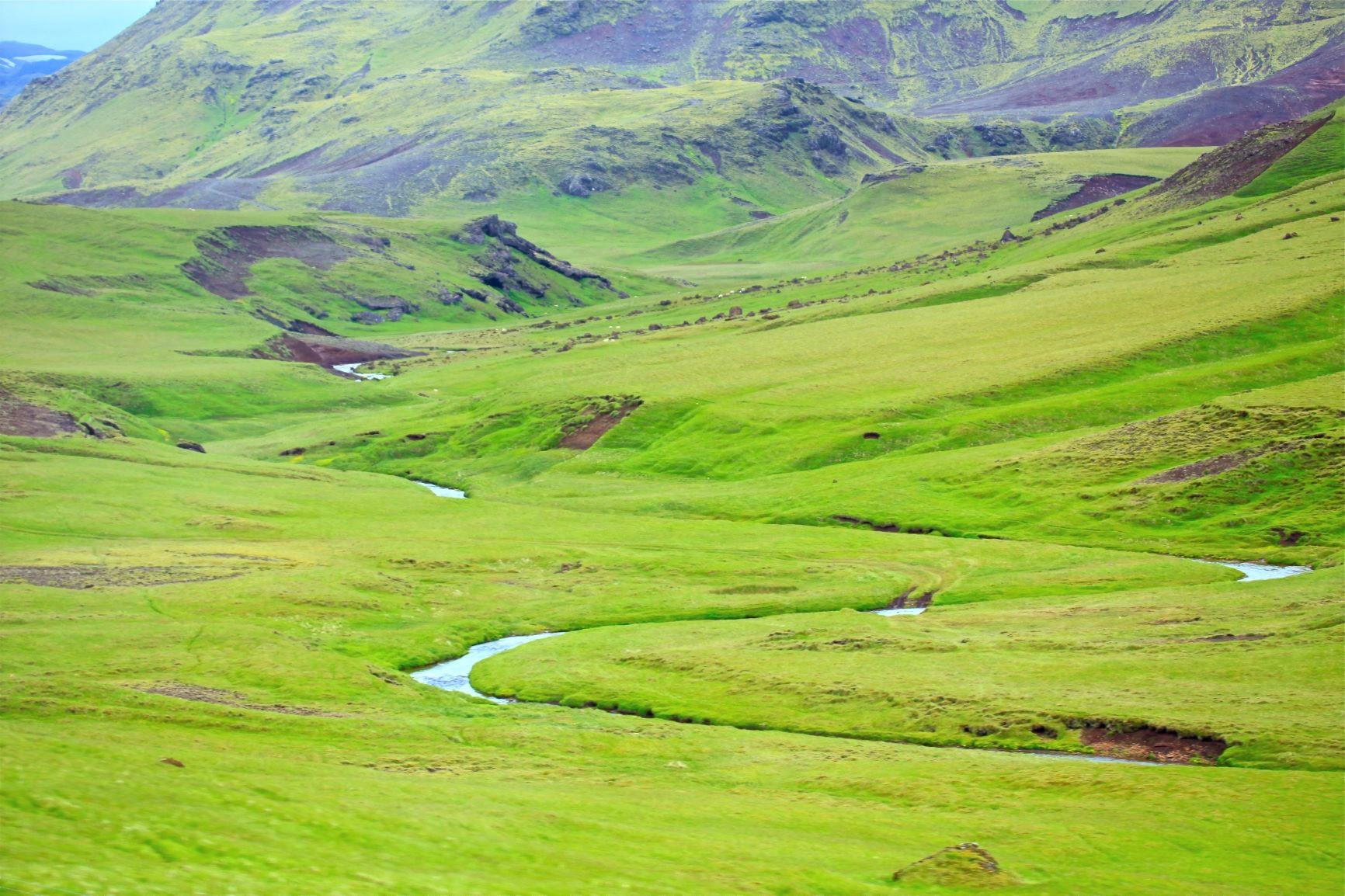 緑美しい6月のアイスランドの大地