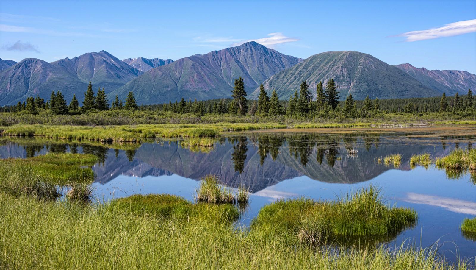ユーコンの自然を独り占めにできる、貸し切りのキャンプ場に3連泊!