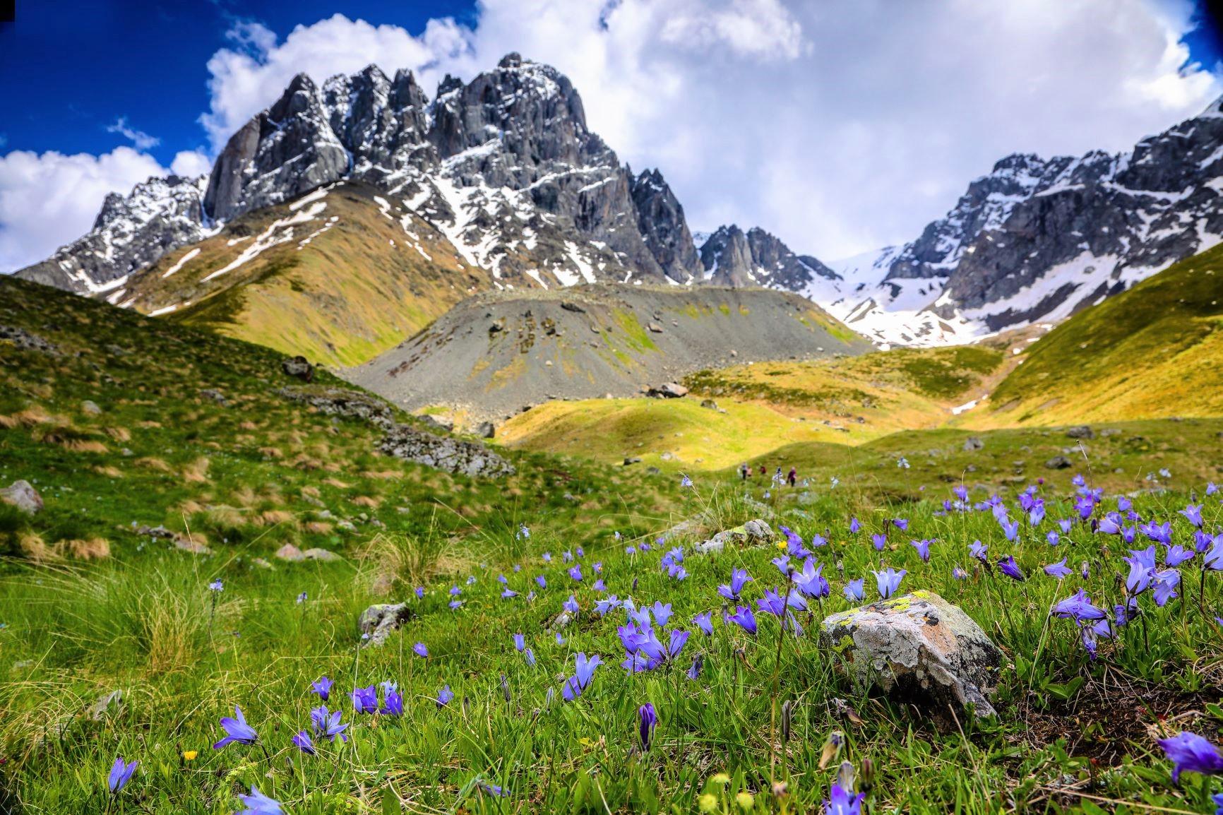チョウキ峰を望みながら、花咲く谷を歩く