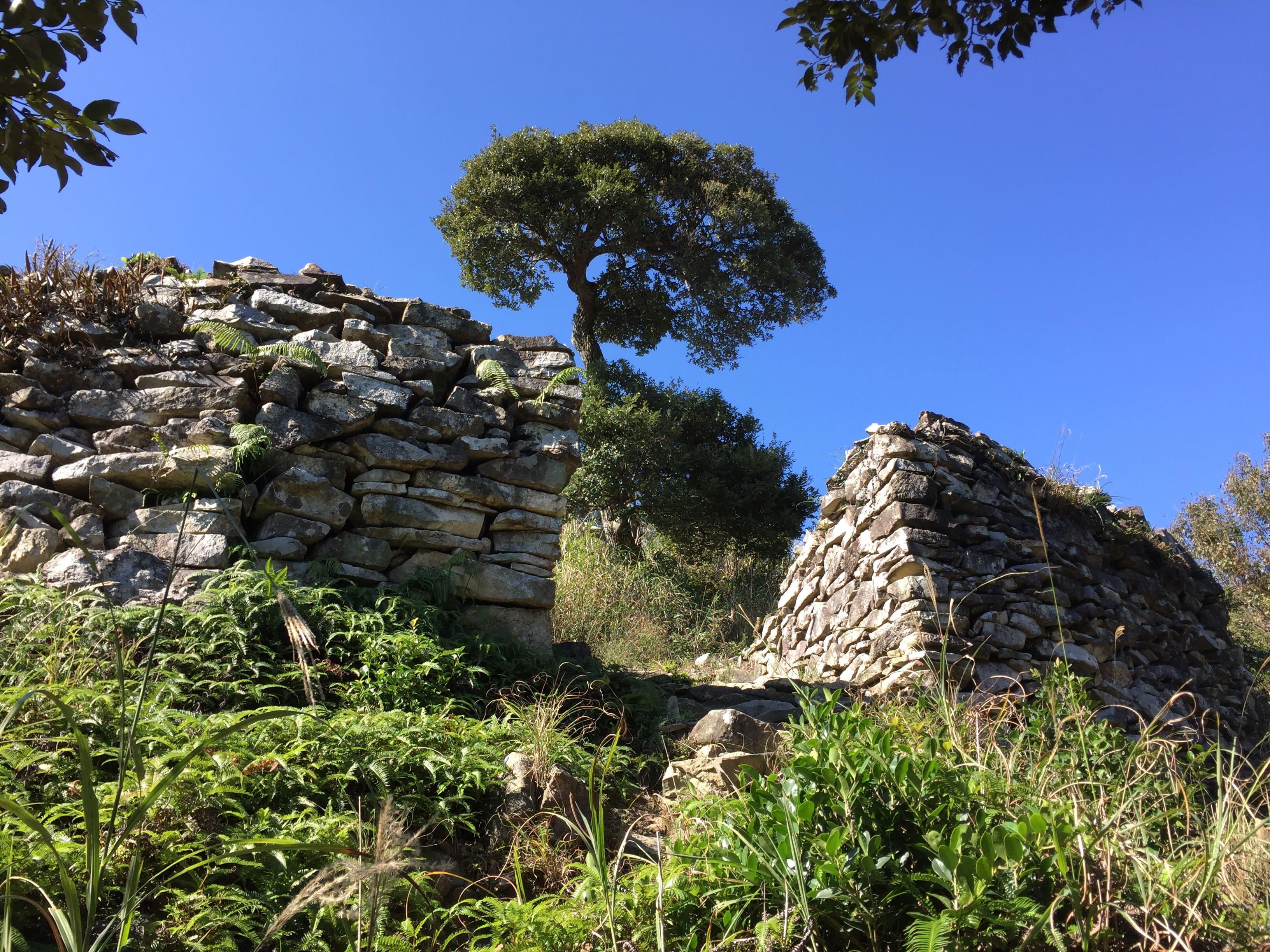 清水城址本丸跡の石積