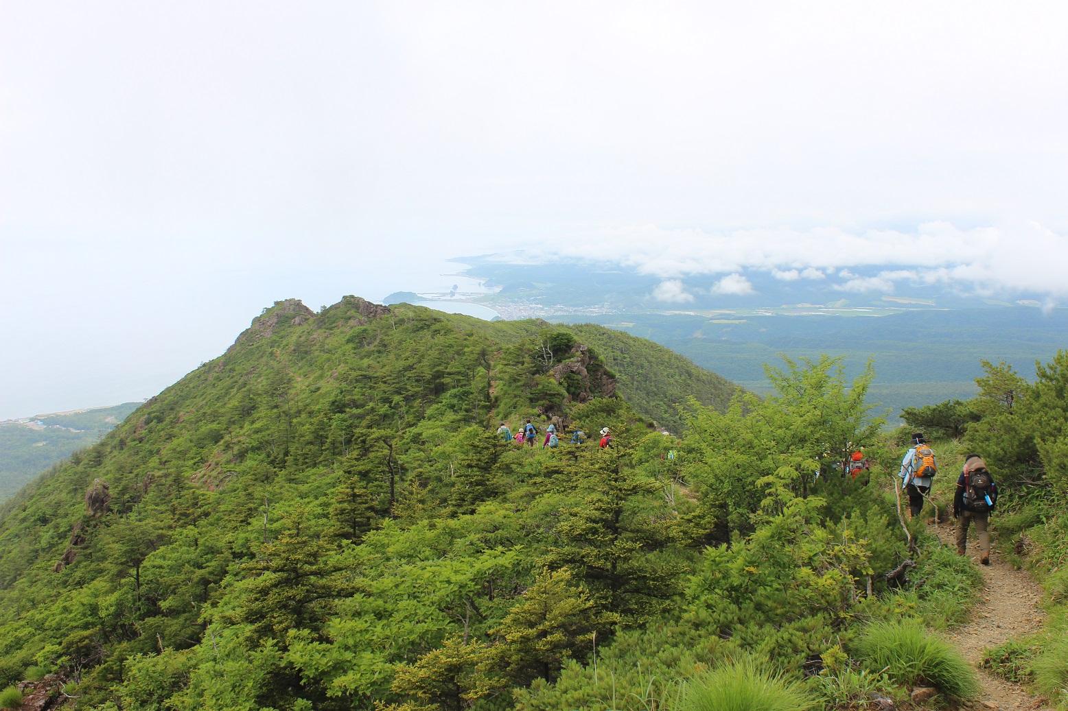 緑豊かなアポイ岳
