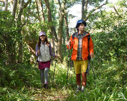 森の中に入り、網地島を縦断する(2日目)