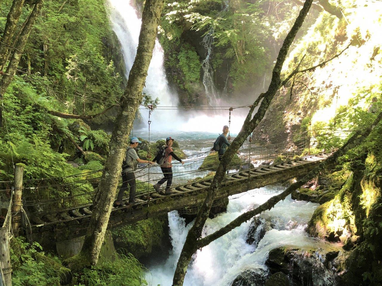美しい森と滝を見ながらハイキング