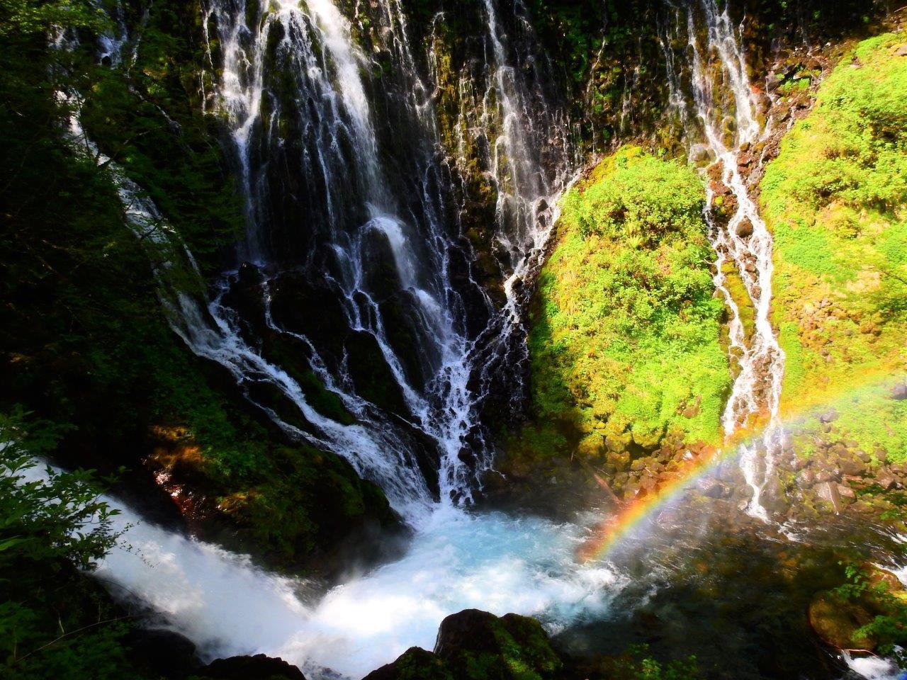 布引滝と美しい苔と虹