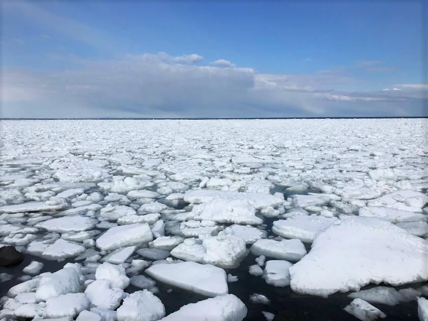 1月末から3月末が流氷のシーズン
