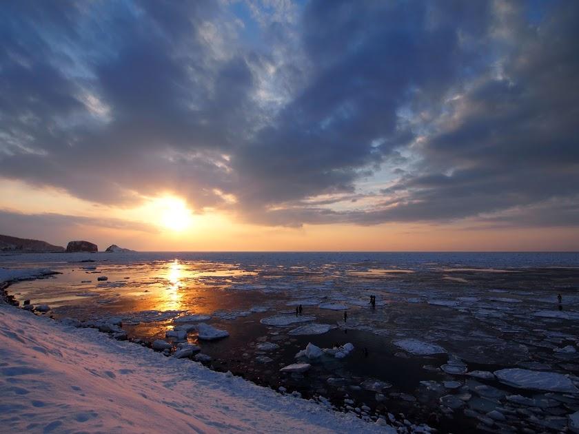 夕日に染まる流氷