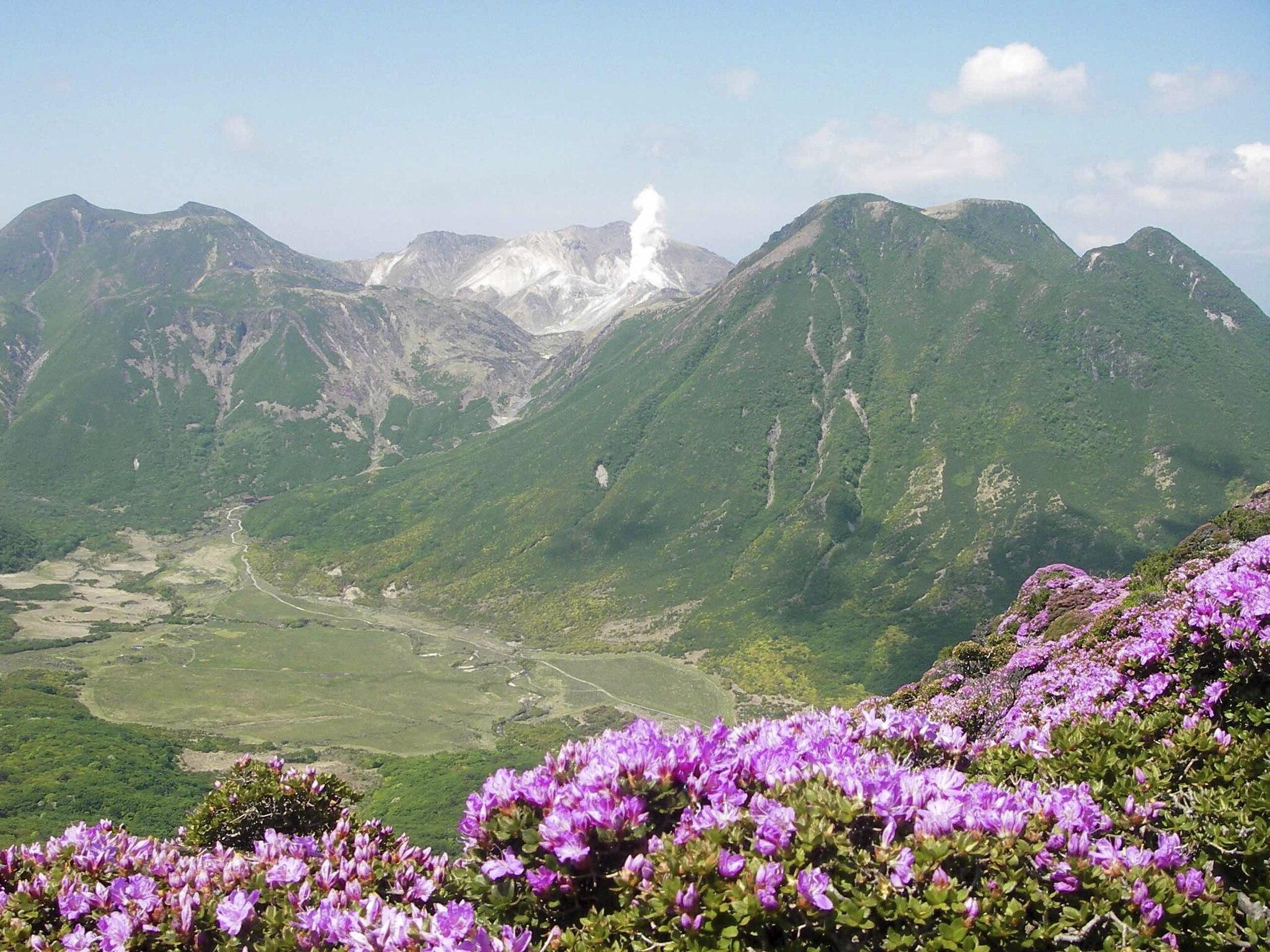 ミヤマキリシマ咲く九重連山