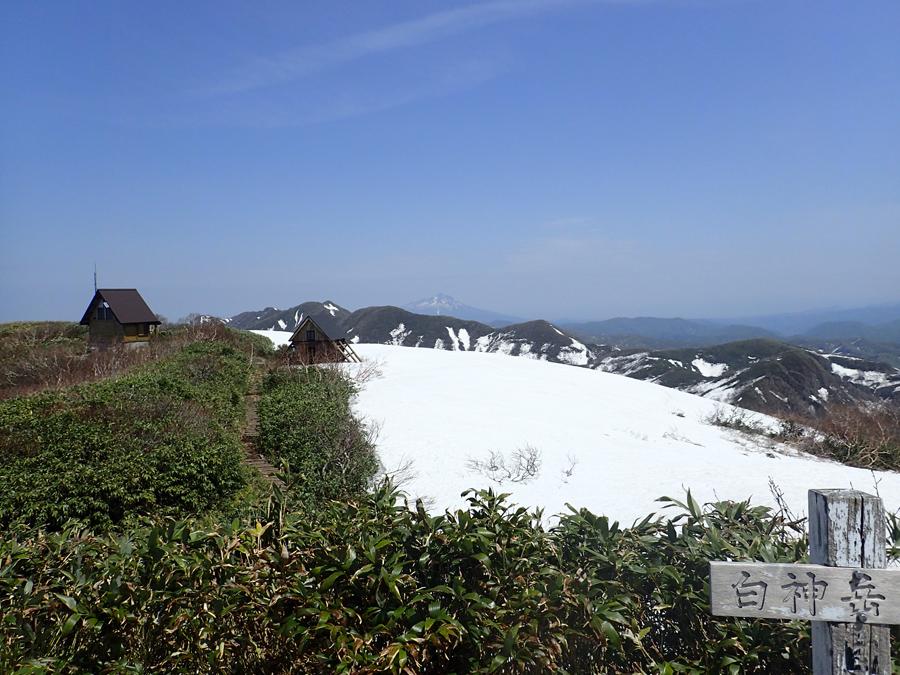 白神岳山頂(5月下旬頃)