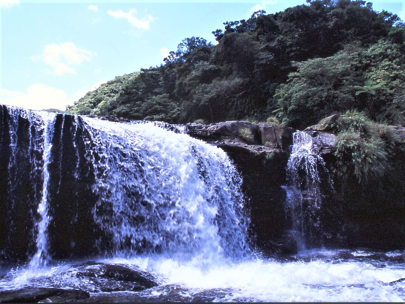 ジャングルをマリユドゥの滝へ