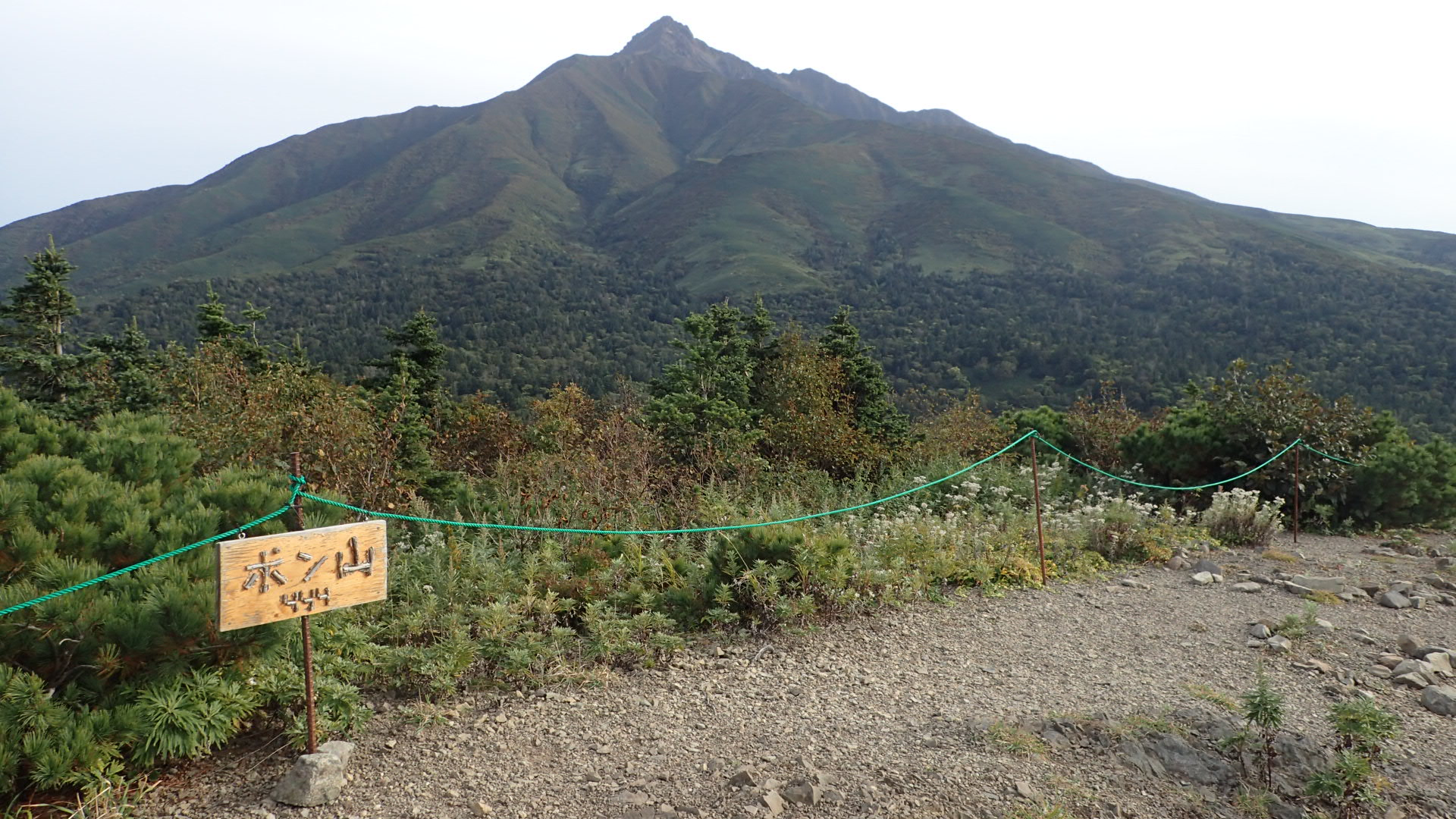 秀峰利尻富士を望むのんびりハイキングを楽しむ