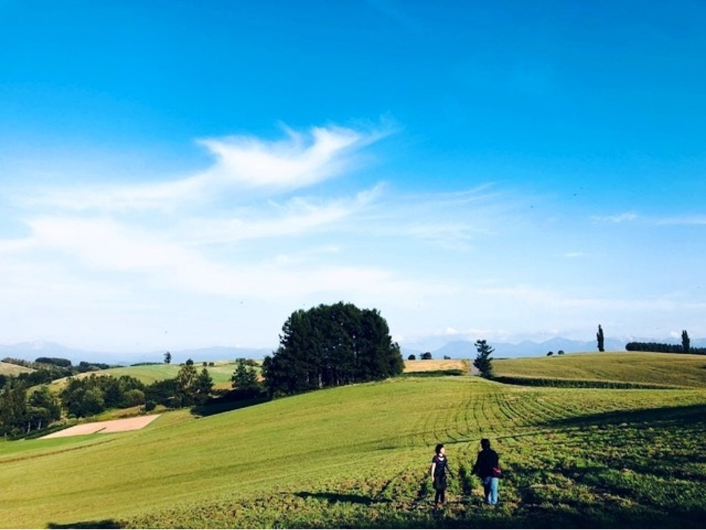 美瑛の丘をウォーキング