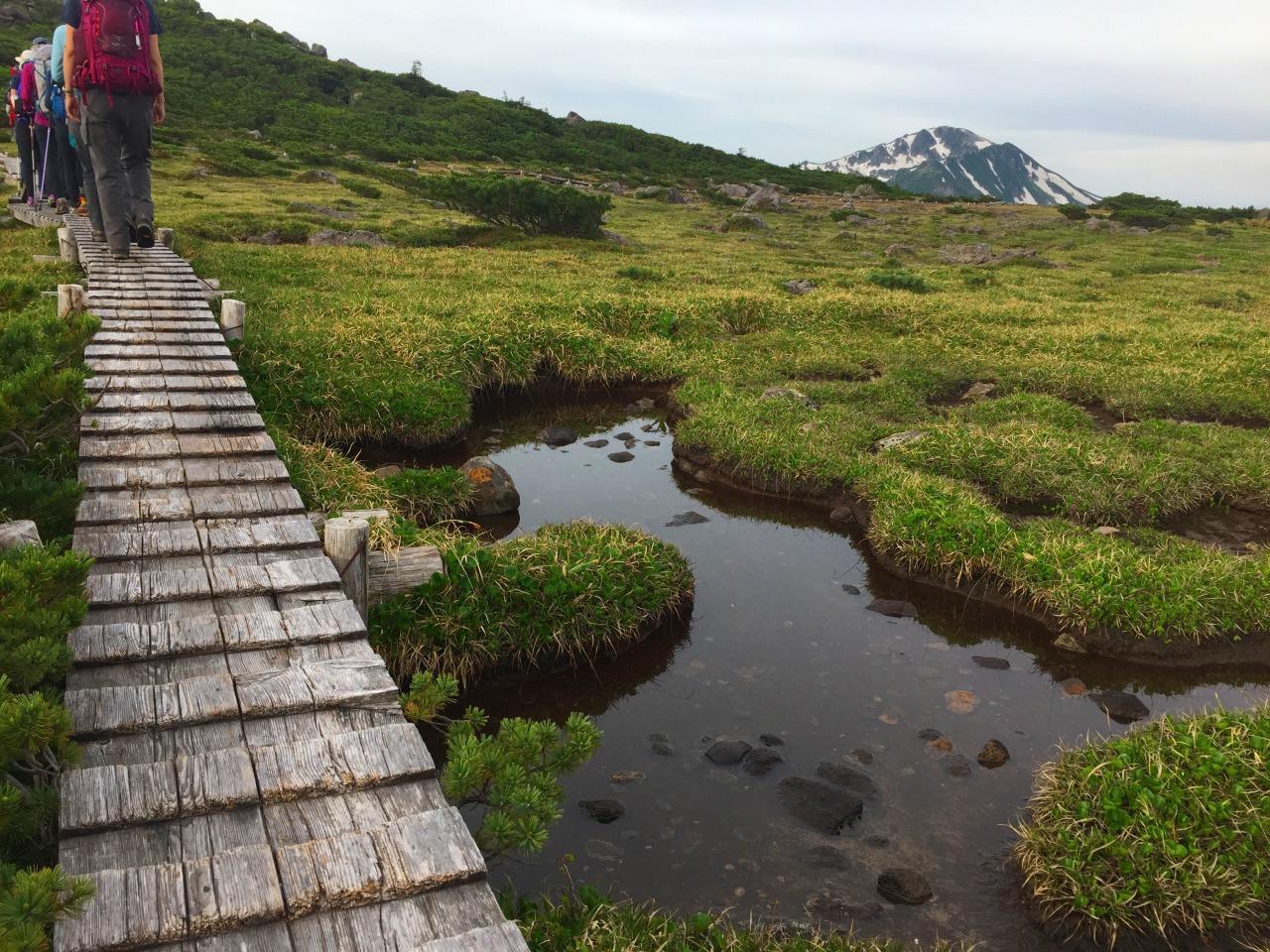池塘と湿原が点在する雲ノ平