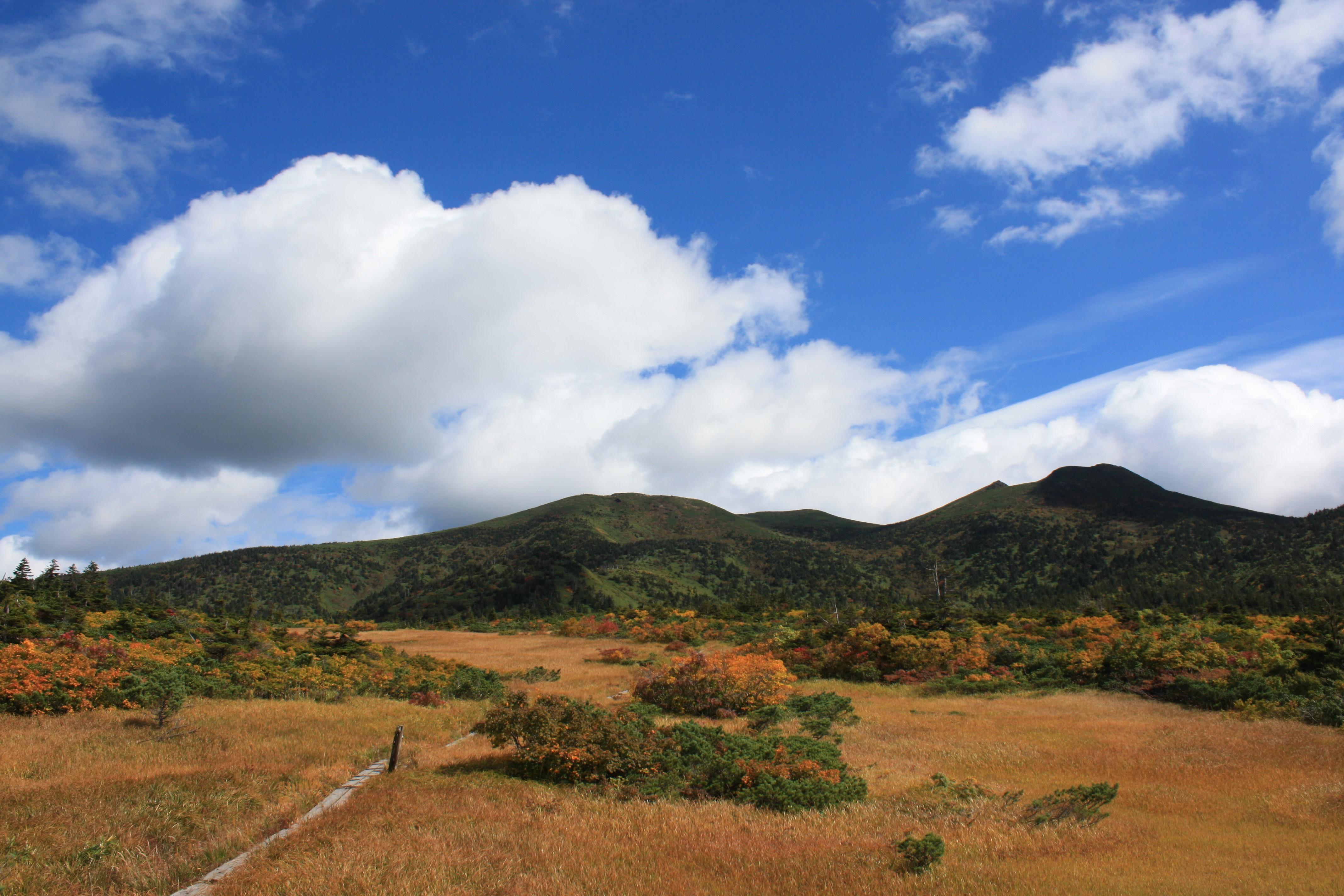 草紅葉の田茂萢湿原から八甲田連山