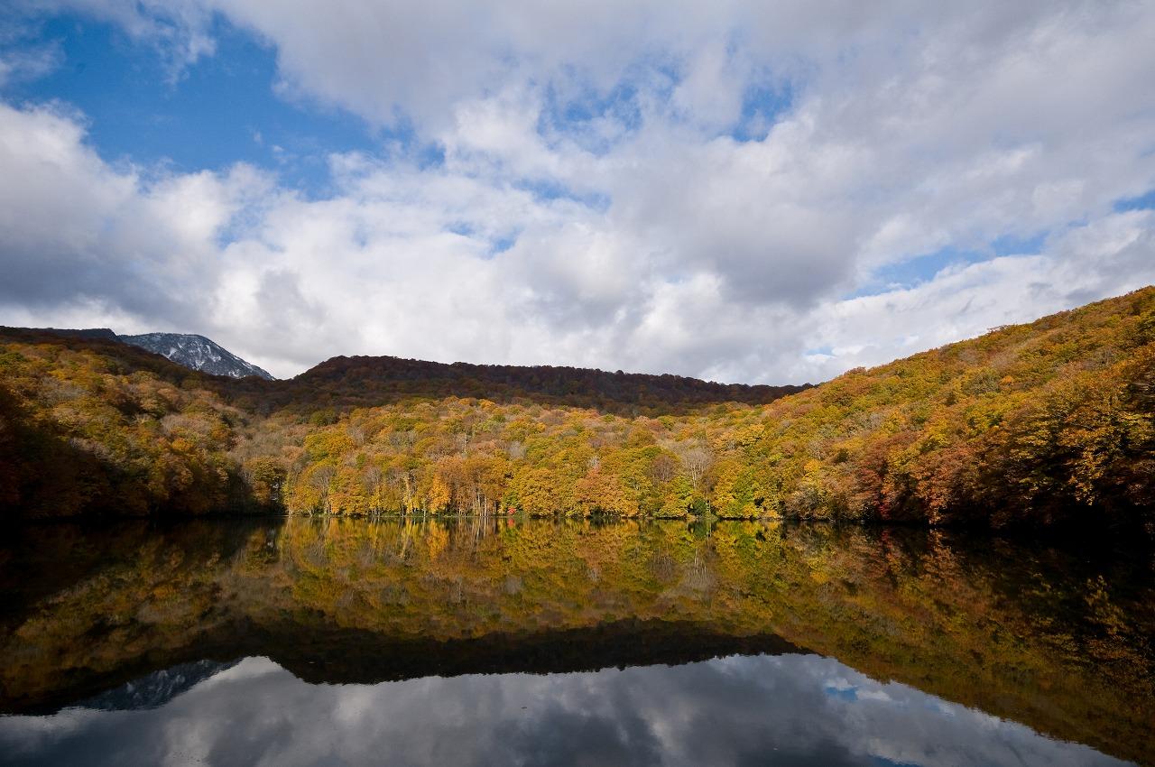 湖面に紅葉を映す蔦沼