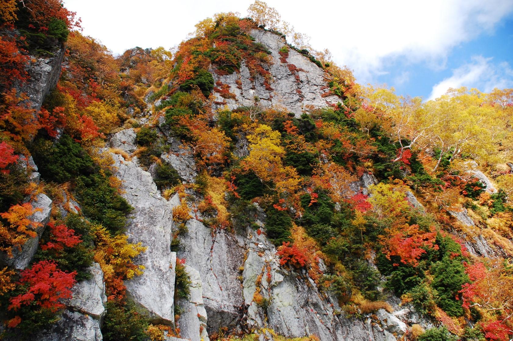 紅葉に染まる黒部峡谷