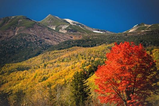 紅葉に染まる乗鞍高原 ©Seth McAllister