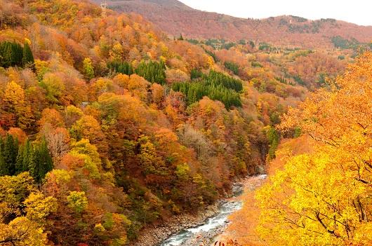 秘境・秋山郷の渓谷沿いを進む(セクション9)