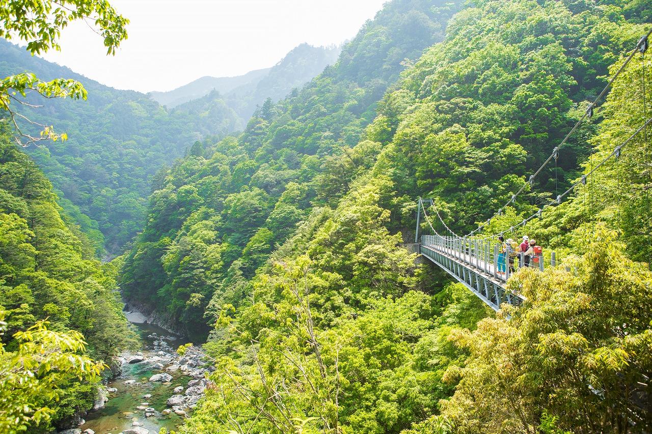 吊橋をいくつもわたって大杉谷を遡ります。