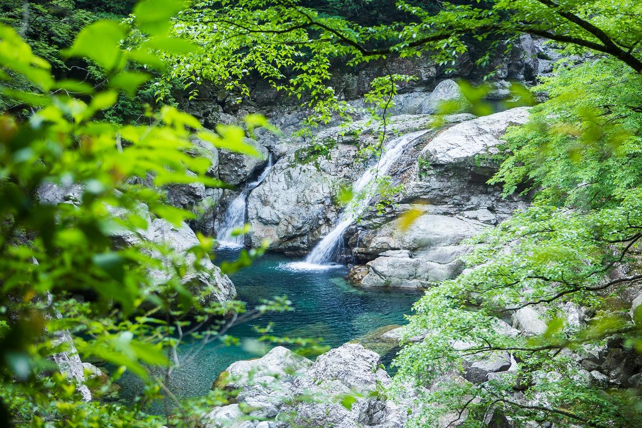 渓谷美を楽しみながら大台ケ原を目指します。
