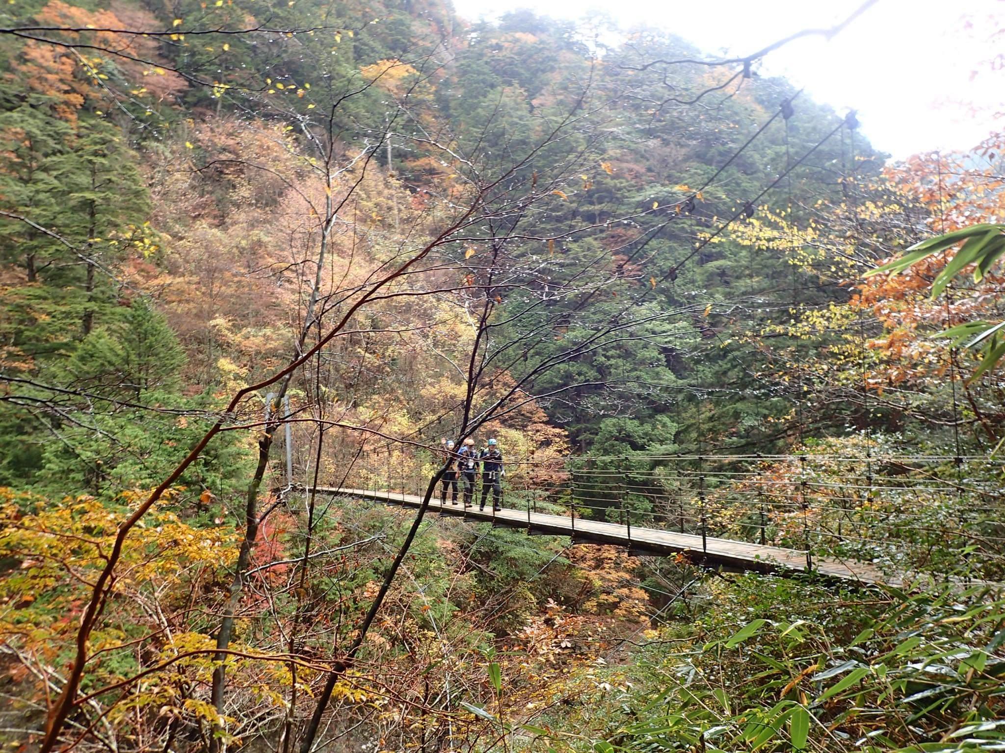 紅葉の大杉谷を歩く