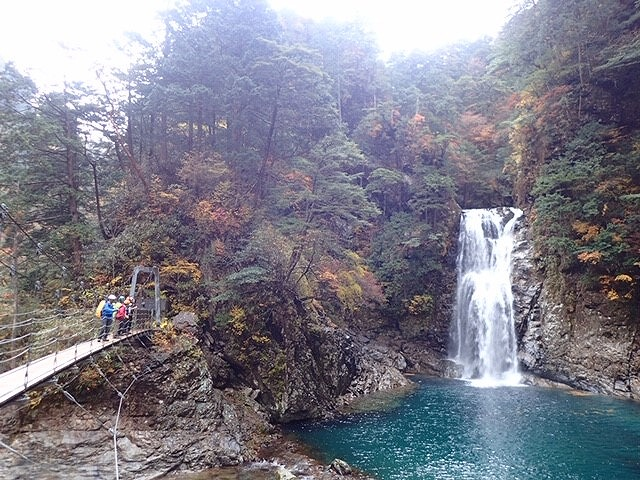 秋の大杉谷 最後の吊橋を渡ると何時でも水量の多い堂倉滝が待っています。