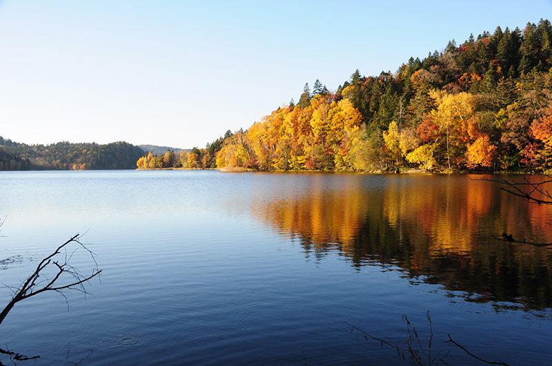 チミケップ湖の紅葉