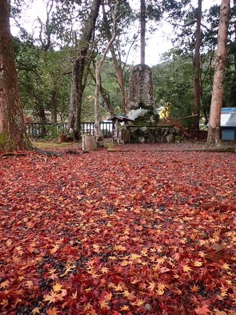 秋の中辺路 近露王子