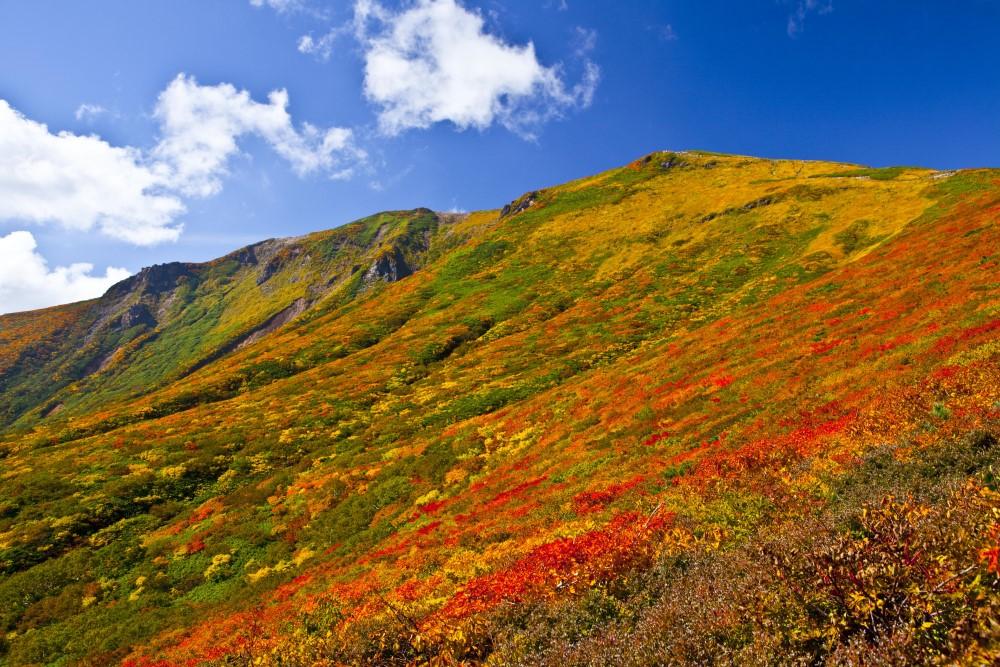 栗駒山の紅葉