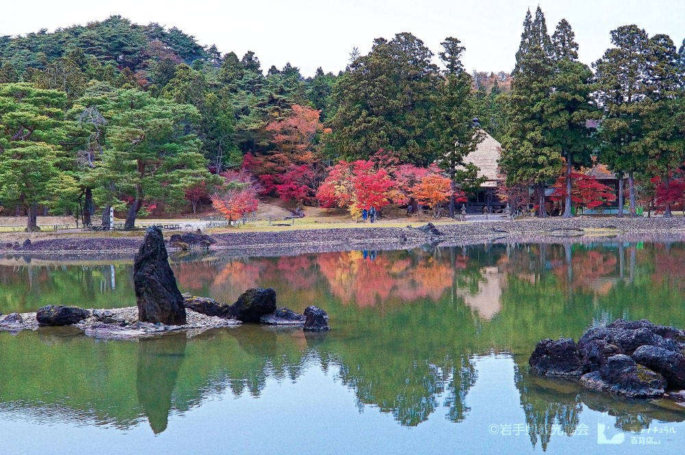 平泉町 毛越寺の浄土庭園